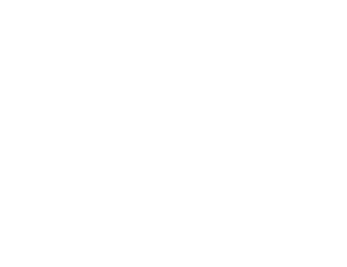 logo novi copy