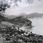 Petrovac na moru, XX vijek